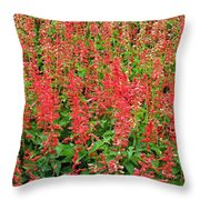 Flower Garden 34 Throw Pillow