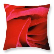 Flower Garden 41 Throw Pillow