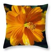 Flower Garden 43 Throw Pillow