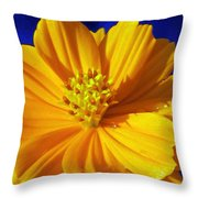 Flower Garden 45 Throw Pillow