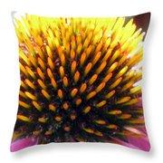 Flower Garden 49 Throw Pillow