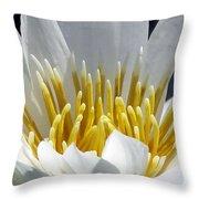 Flower Garden 55 Throw Pillow