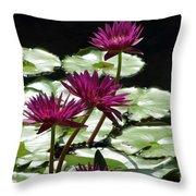 Flower Garden 59 Throw Pillow