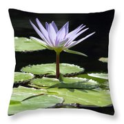 Flower Garden 62 Throw Pillow