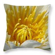 Flower Garden 68 Throw Pillow