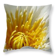 Flower Garden 69 Throw Pillow