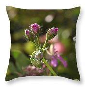 Flower-geranium Buds Throw Pillow