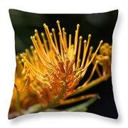 Flower-grevillea-australian Native Throw Pillow