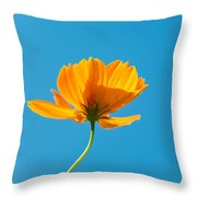 Flower - Growing Up In Brooklyn Throw Pillow