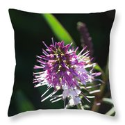 Flower-hebe  Throw Pillow