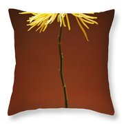 Flower In A Vase Throw Pillow