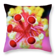 Flower In Pink Throw Pillow