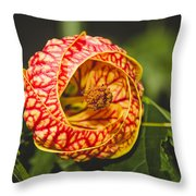 Flower In Red And Yellow  Throw Pillow