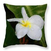 Flower In The Rain Throw Pillow