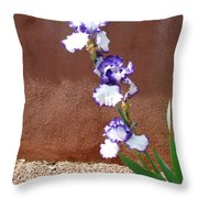 Flower In The Sun Throw Pillow