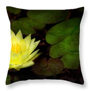 Flower - Lily - Morning Showers Throw Pillow