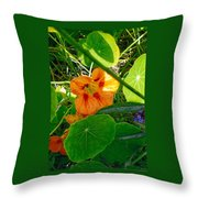 Flower Medley Throw Pillow