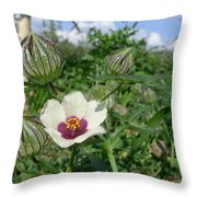 Flower Of An Hour Throw Pillow