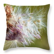Flower Of The Canada Thistle Throw Pillow