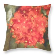 Flower On The Wall Throw Pillow