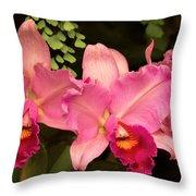 Flower - Orchid -  Cattleya - Magenta Splendor Throw Pillow