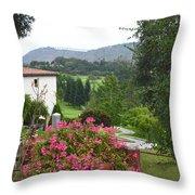 Flower Pot 3 Throw Pillow