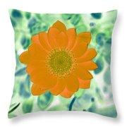Flower Power 1433 Throw Pillow