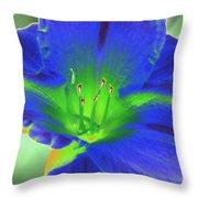 Flower Power 1443 Throw Pillow