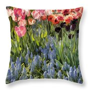 Flower Splash Viii Throw Pillow