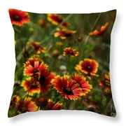 Texas Indian Blanket -  Luther Fine Art Throw Pillow