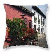 Flower Wagon Antigua Guatemala Throw Pillow