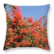 flower wall in Madagascar Throw Pillow