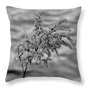 Flower Weed Throw Pillow