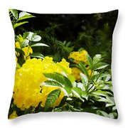 Flower - Austin Botanical Gardens -  Luther Fine Art Throw Pillow