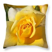 Flower-yellow Rose-delight Throw Pillow