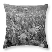 Flowered Field Throw Pillow