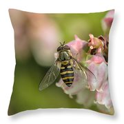 Flowerfly Pollinating Blueberry Buds Throw Pillow