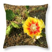 Flowering Cactus Throw Pillow