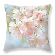 Flowering Cherry Tree Blossoms Throw Pillow
