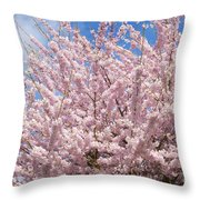 Flowering Cherry Tree Throw Pillow