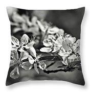Flowering Crabapple 2 Bw Throw Pillow