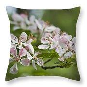 Flowering Crabapple 2 Throw Pillow