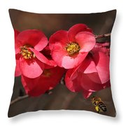 Flowering Quince With Bee Throw Pillow