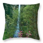Flowering Tree Below Multnomah Falls Columbia River Gorge Nsa Oregon Throw Pillow