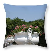 Flowerpots In A Row - Chateau Chenonceau Throw Pillow