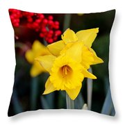 Flowers And Berries 030515ab Throw Pillow