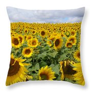 Flowers And Clouds Throw Pillow