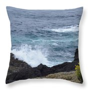 Flowers And Crashing Waves Throw Pillow