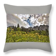 Flowers And Mountains And Sky...oh My Throw Pillow