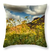 Flowers Are Food For The Soul  Throw Pillow